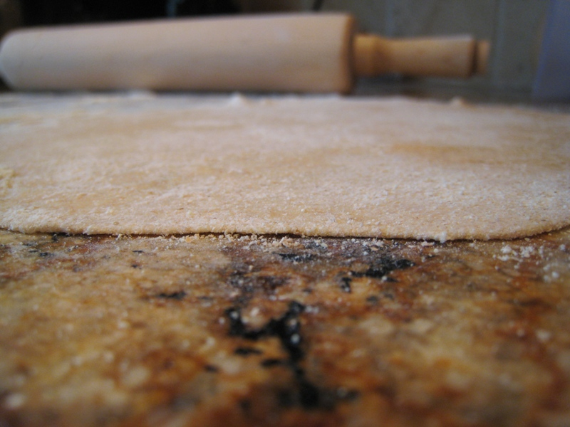 img 5767   $1.10 + 110 kcal Organic Homemade Spelt Tortillas