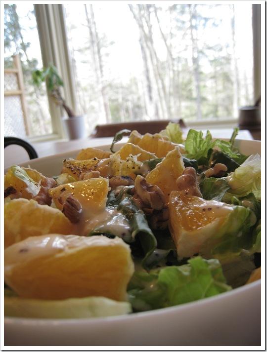 img 9323 thumb   A Salad Champ + BBBC Progress!