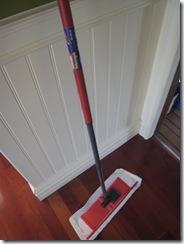 img 1016 thumb   Clean Sweep