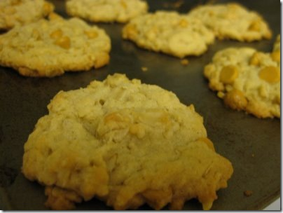 Kara oatmeal butterscotch cookies