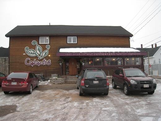 IMG 8123 thumb1   Calactus Cafe: A Wonderful Vegan Dining Experience