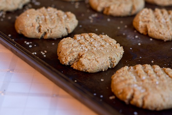 20101126IMG 3516 thumb   Auntie Angie's Soft Peanut Butter Cookies