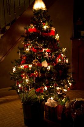 20101128IMG 3839 thumb   Christmas In Alberta