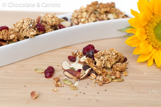 Homemade Granola Variation 2   Recipe Link Love, Feb 28
