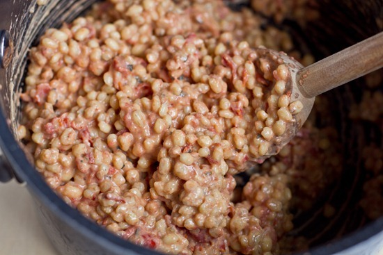 IMG 2477   Ultra Creamy & Cheezy Tomato Risotto & Dill Chip Chickpeas