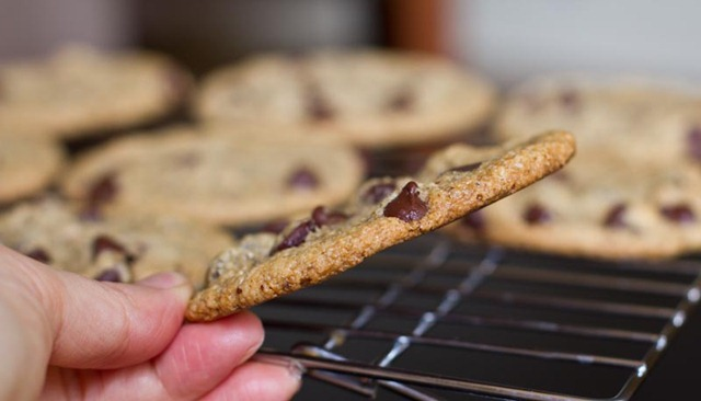 Vegan And Gluten Free Chocolate Chip Cookies Oh She Glows