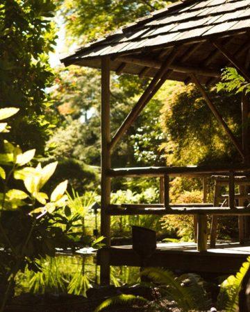 Butchart-Gardens-5953_thumb
