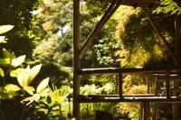 Butchart Gardens-5953