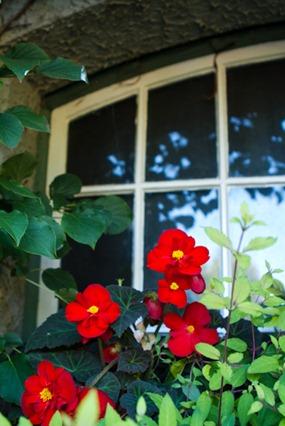 Butchart Gardens Victoria-6029