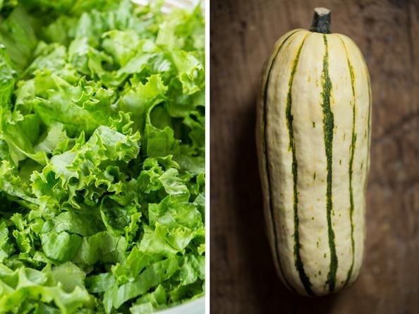 saladsquash