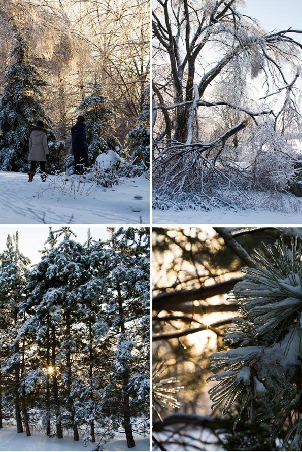 winterphorography2