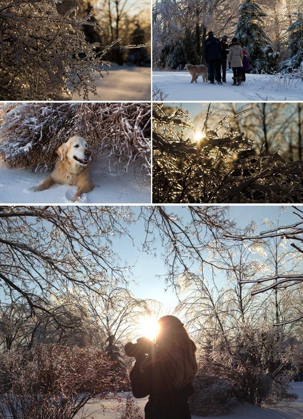 winterphotography